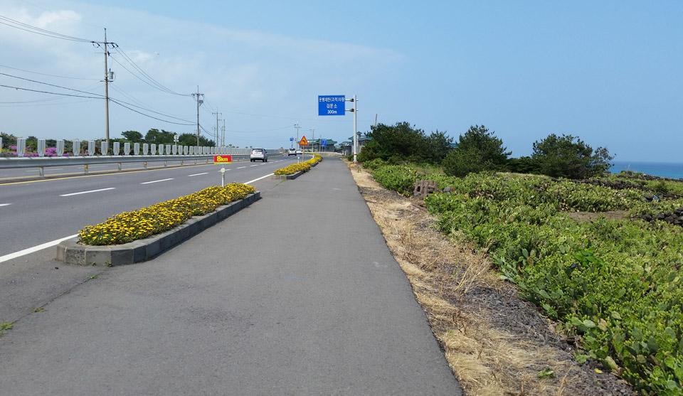 Cycling Path on Jeju-do