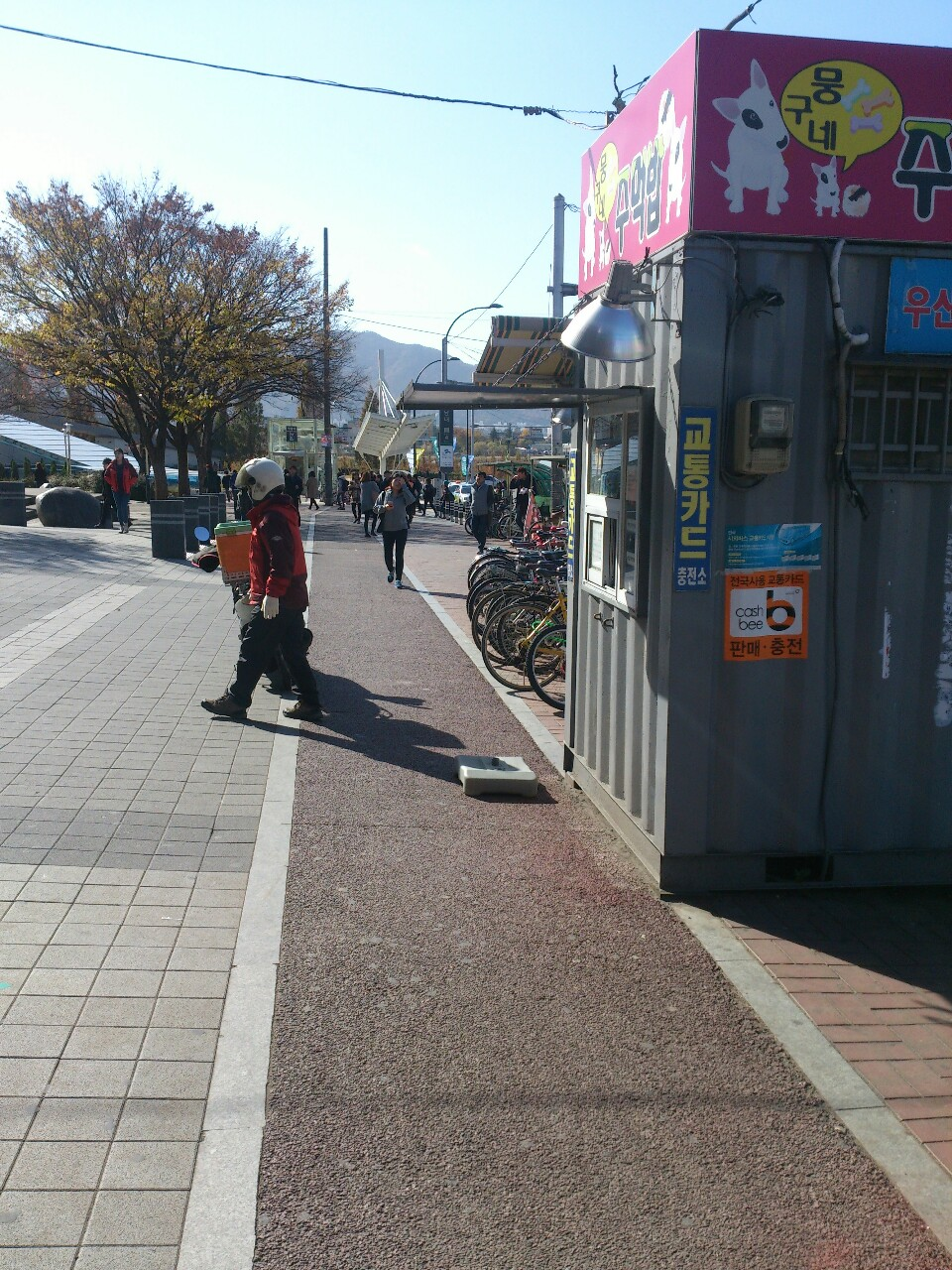 Korea Bad Bicycle Path Design