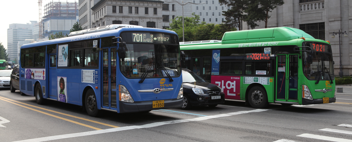 Seoul's Blue and Green Buses
